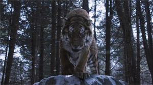 The Tiger: An Old Hunter's Tale - Film Screenshot 6